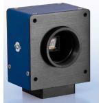 SVS625 CF CamLink kamera